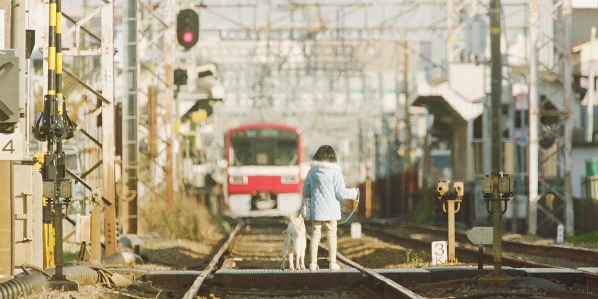 伊集院静 原作「駅までの道をおしえて」を映画化